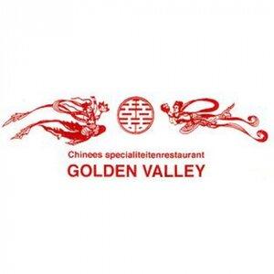 Golden Valley B.V. logo