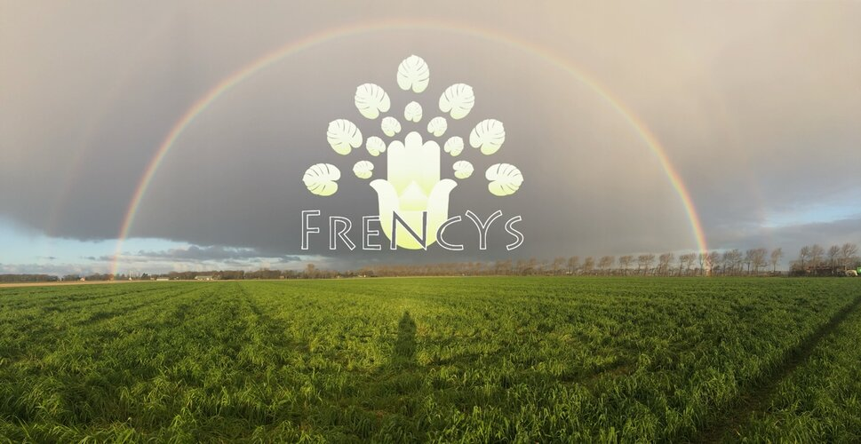 Frencys Healing - Be your OWN, Wees JEZELF