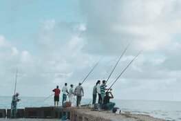 Zeevissen voor minder mobielen