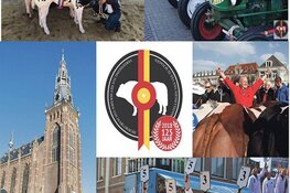 Wo. 10 April Stalletjesmarkt Paasvee Schagen 2019