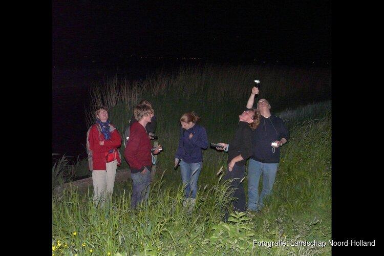 Nachtelijke wandeling in Eendenkooi 't Zand