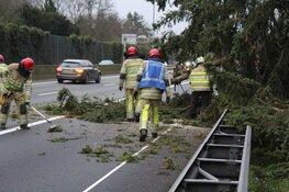 Zondagse storm Ciara houdt Nederland in greep (fotoalbum)
