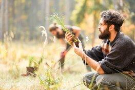 Indie Campers werkt samen met Forstfreunde: CO2 compensatie voor je roadtrip door het planten van bomen