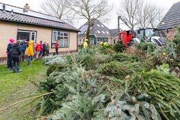 2000 kerstbomen opgehaald voor Charley
