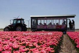 Twee nieuwe activiteiten bij het kleurrijkste voorjaarsevenement in de tuin van Schagen van 6 april t/m 6 mei 201