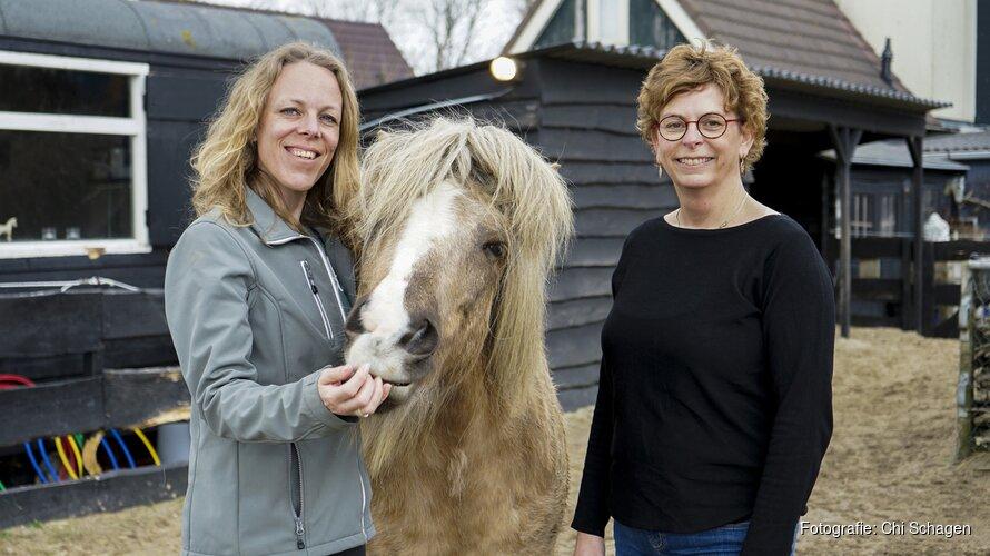 """Wil je ook ontspannen tussen de paarden en ervaren wat ze jou """"te vertellen"""" hebben?"""