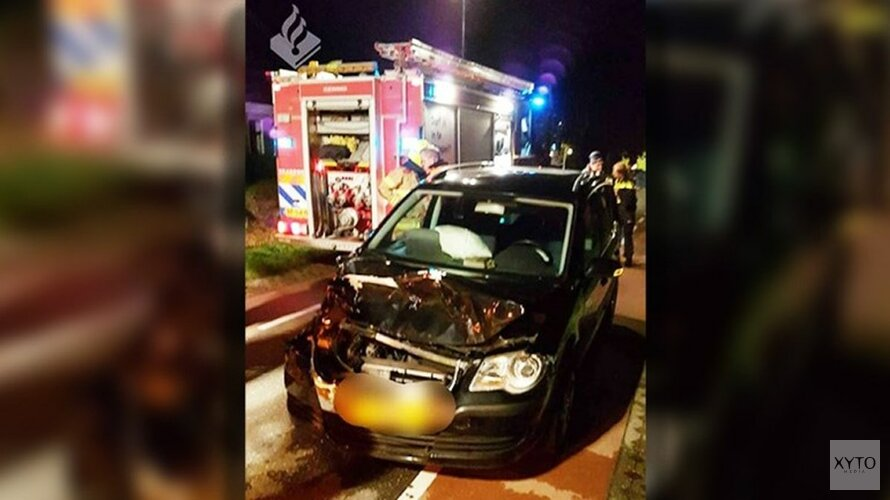 Pony overleden na botsing met auto in Dirkshorn